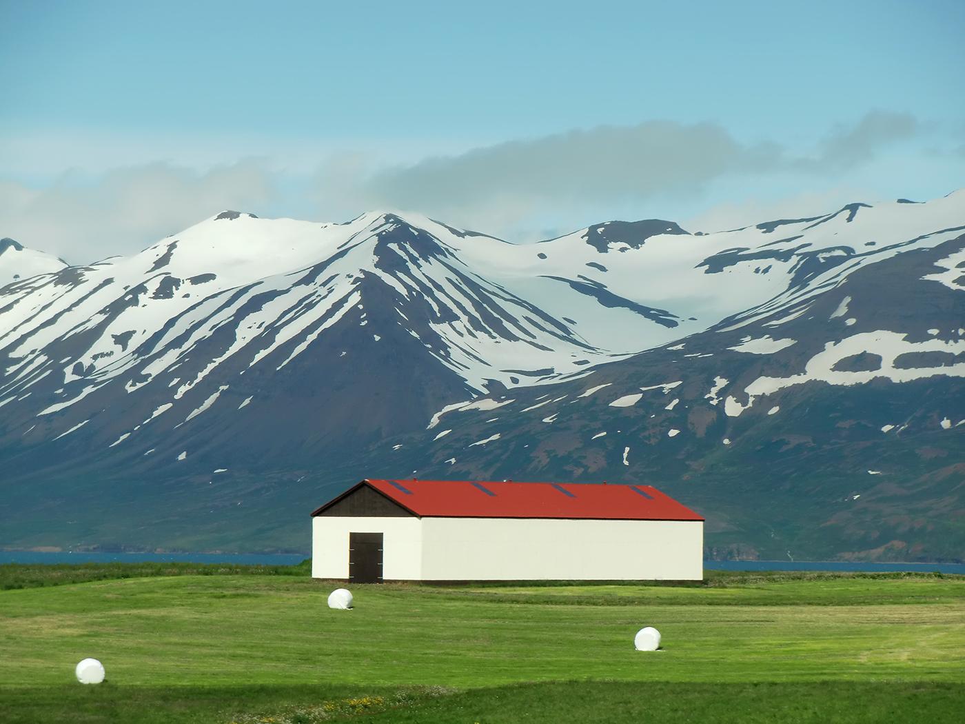 Dalvik, IJsland